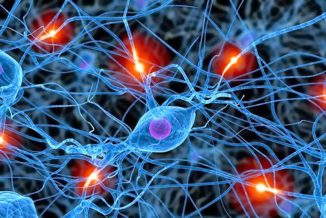 Qué pasa con las neuronas que no funcionan?: ¿Qué pasa con las ...