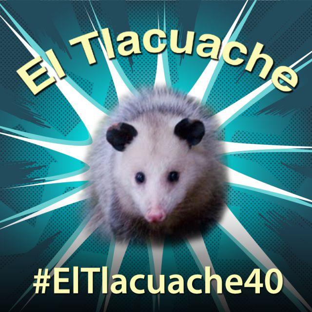 Lo que no sabías de los Tlacuaches