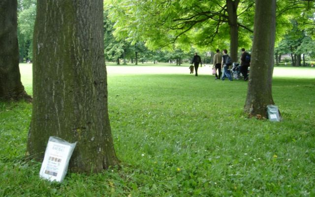 Profesora crea divertida actividad para atrapar libros