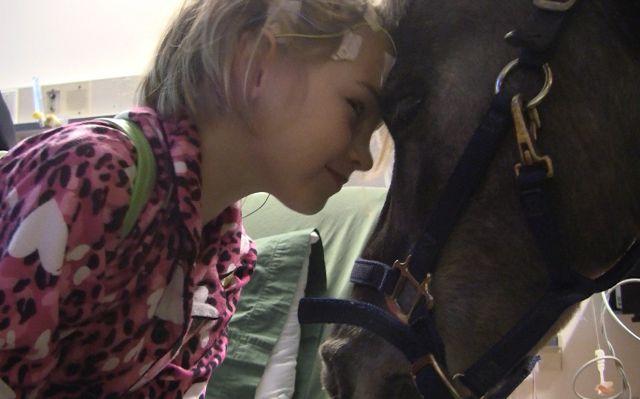 Petie disfruta ayudar a los niños más necesitados