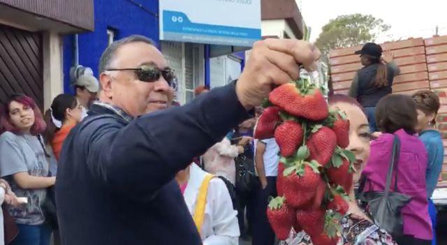 No creerás en cuanto tiempo un michoacano vendió una tonelada de fresas