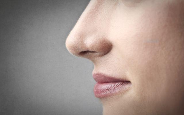 El clima influye en la forma de nariz