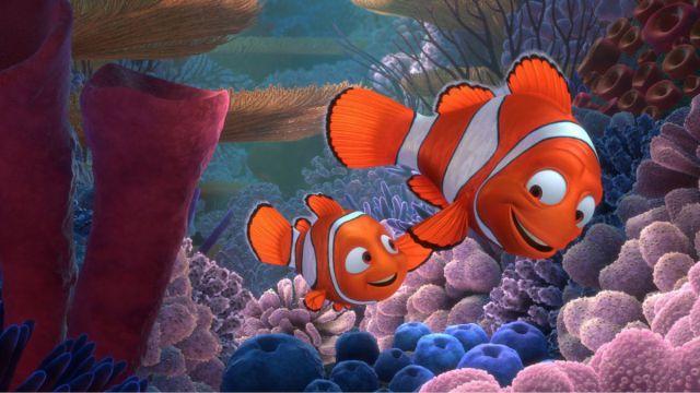 """La verdad de los pez payaso que habría cambiado toda la historia de """"Buscando a Nemo"""""""