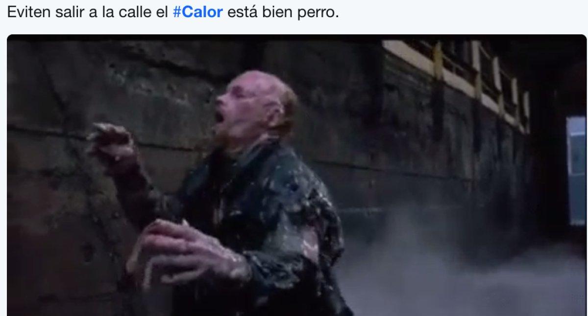 Los mejores memes para combatir este calor
