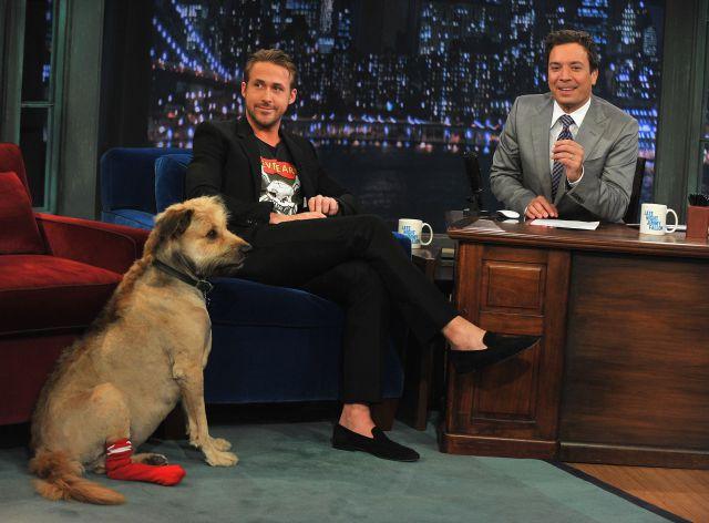 Ryan Gosling y su perro George