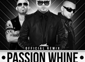 Passion Whine remix