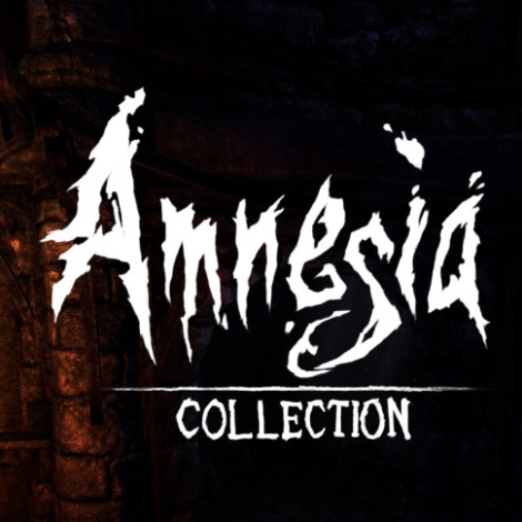 Amnesia Collection, Reseña